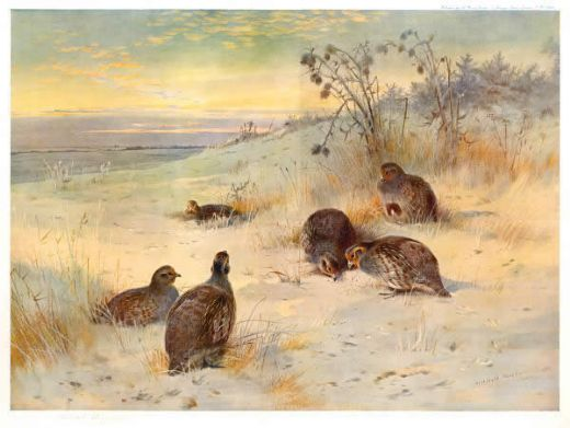 archibald thorburn close of a winter s day painting