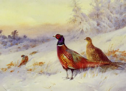 archibald thorburn frosty sunrise painting