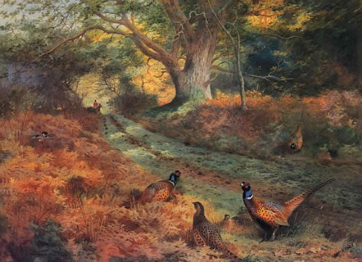 archibald thorburn the bridle path paintings