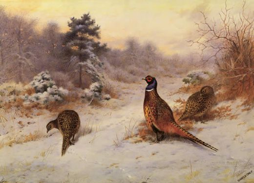 archibald thorburn winter s sunset prints