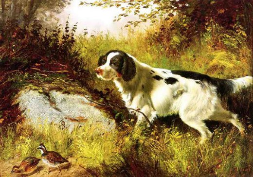 arthur fitzwilliam tait dog and quail paintings