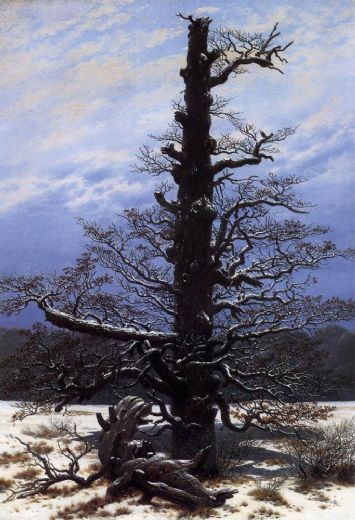 caspar david friedrich the oaktree in the snow painting