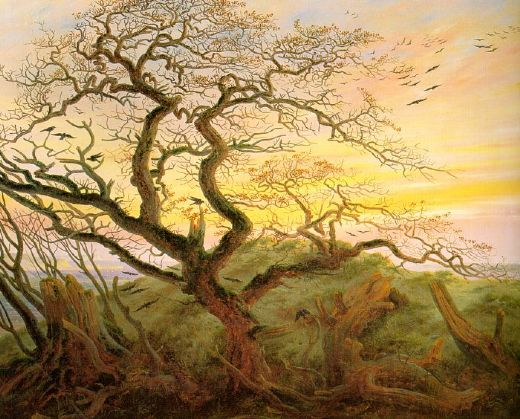 caspar david friedrich the tree of crows painting