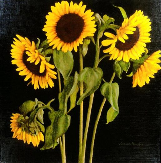 sunflowers painting - david hardy sunflowers paintings for sale