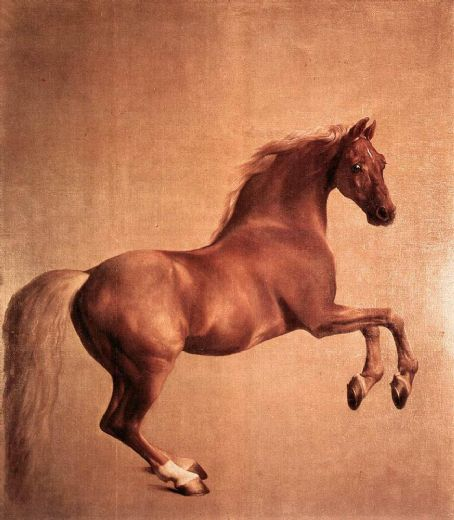 george stubbs whistlejacket painting