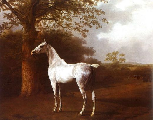 jacques laurent agasse white horse in pasture painting
