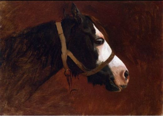 jean leon gerome profile of a horse painting