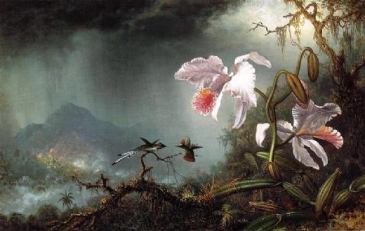 martin johnson heade two fighting hummingbirds with two orchids paintings