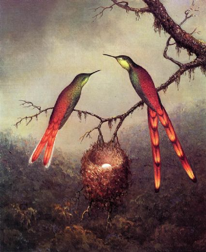 martin johnson heade two hummingbirds garding an egg paintings