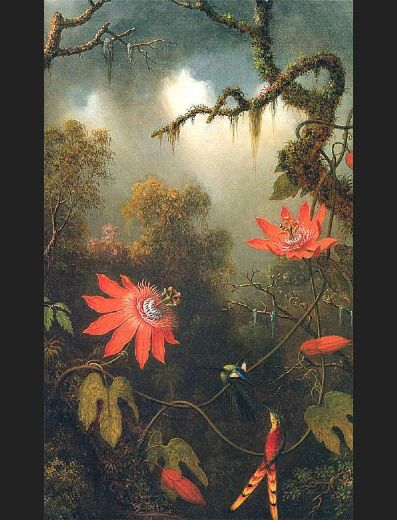 martin johnson heade two hummingbirds perched on passion flower vines painting