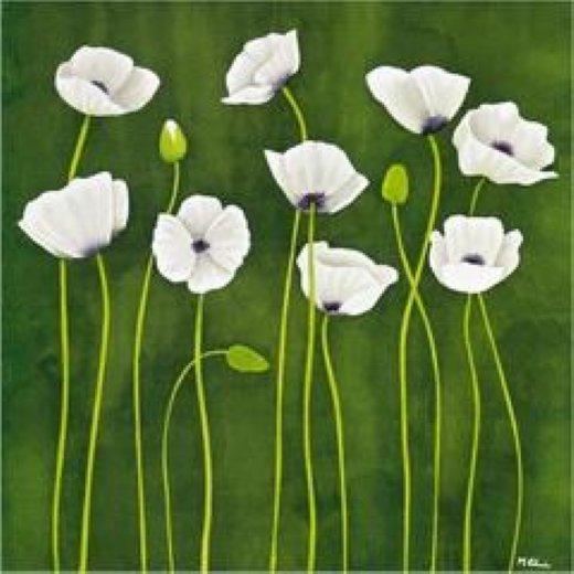 Some white poppy flowers painting original paintings some white original paintings some white poppy flowers paintings mightylinksfo