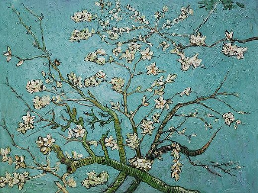 vincent van gogh branches of an almond tree in blossom iii oil paintings vincent van gogh. Black Bedroom Furniture Sets. Home Design Ideas
