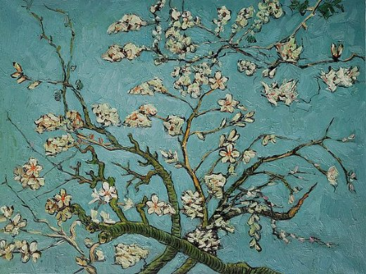 shopping vincent van gogh branches of an almond tree in blossom painting vincent van gogh. Black Bedroom Furniture Sets. Home Design Ideas