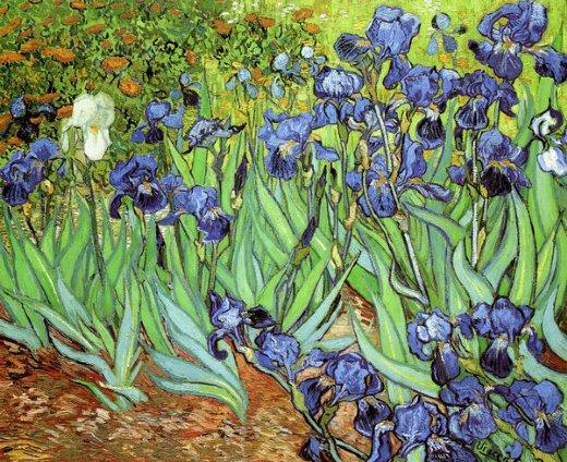 Irises v painting vincent van gogh irises v paintings for Van gogh irises