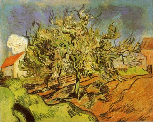vincent van gogh landscape with three trees and a house posters