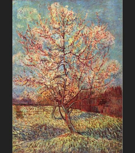 vincent van gogh peach tree in bloom paintings
