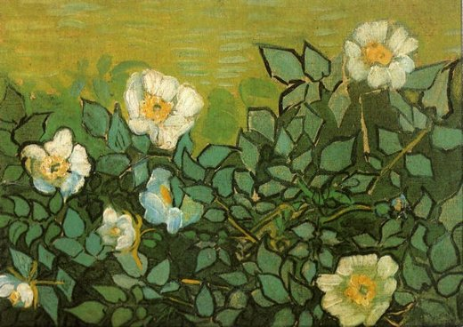 vincent van gogh wild roses painting