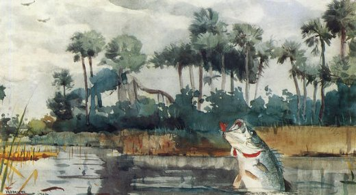 winslow homer black bass florida paintings