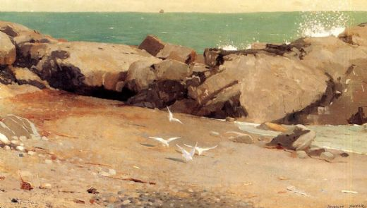 winslow homer rocky coast and gulls paintings