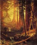 albert bierstadt giant redwood trees of california poster