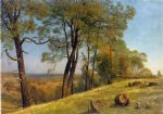 landscape paintings - landscape rockland county california by albert bierstadt