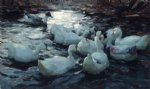 ducks feeding by alexander koester paintings