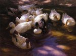 eleven ducks in the morning sun by alexander koester paintings