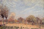 alfred sisley apple trees in flower spring morning painting
