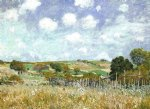 meadow by alfred sisley oil paintings