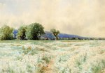 the daisy field by alfred thompson bricher painting
