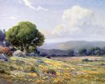 california wildflowers by angel espoy painting