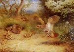 summer partridge and chicks by archibald thorburn painting