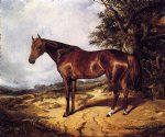 thoroughbred by arthur fitzwilliam tait painting