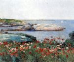 poppies isles of shoals by childe hassam paintings