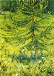 larch sapling by franz marc painting