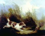 george armfield spaniel flushing mallard painting