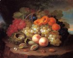 george forster paintings - still life with fruit and bird s nest by george forster