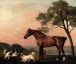 a bay hunter with two spaniels by george stubbs painting