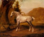 a grey stallion in a landscape by george stubbs painting