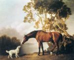 george stubbs bay horse and white dog painting