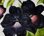 black and purple petunias by georgia o keeffe painting