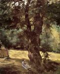 woman seated under a tree by gustave caillebotte posters