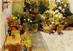 joaquin sorolla y bastida a rooftop with flowers painting 31123
