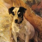 joaquin sorolla y bastida portrait of a jack russell painting 31169
