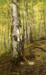 silver birches by john george brown painting