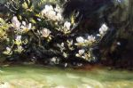 magnolias by john singer sargent paintings-80608