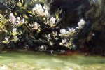 magnolias by john singer sargent painting