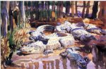 muddy alligators by john singer sargent painting