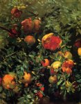 pomegranates iii by john singer sargent painting