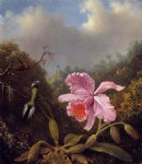 martin johnson heade fighting hummingbirds with pink orchid painting